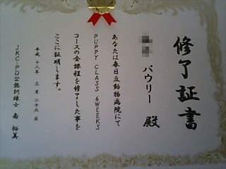 卒業証書v