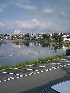 近所の池 大きいです。