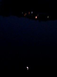 下、水に映るお月様