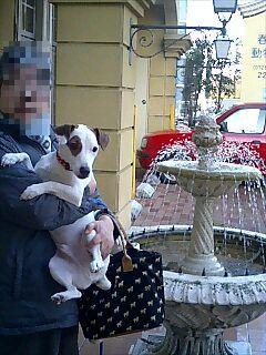 母と噴水前で