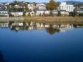 池周辺散歩コース