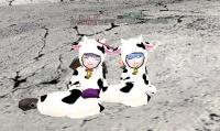 相方と牛ロブ