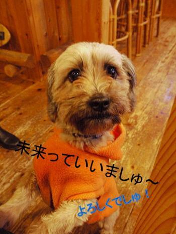 縺ソ縺柔convert_20110207143026