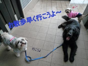 ・誉convert_20110212171100