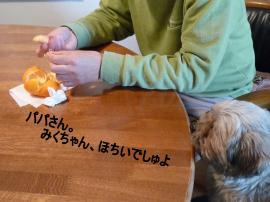 ・包シ搾シ胆convert_20110227214249
