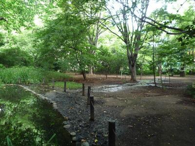 4.川ができた秘密の広場