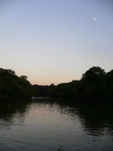 夕暮れの井の頭公園3