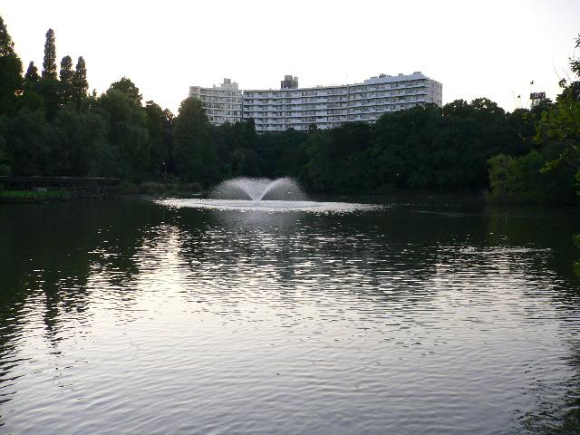 夕暮れの井の頭公園2