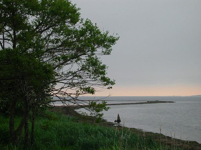 尾岱沼の夜明け