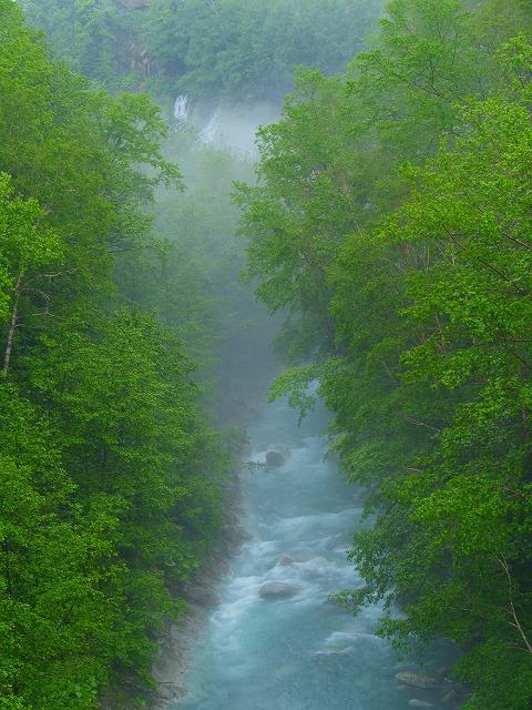 美瑛川(白髭の滝下流)