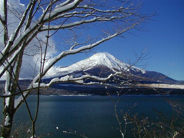 雪の日の山中湖1
