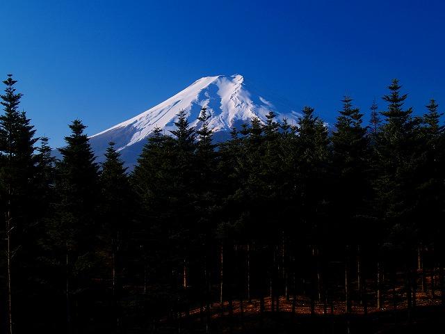 富士レーダードームからの富士