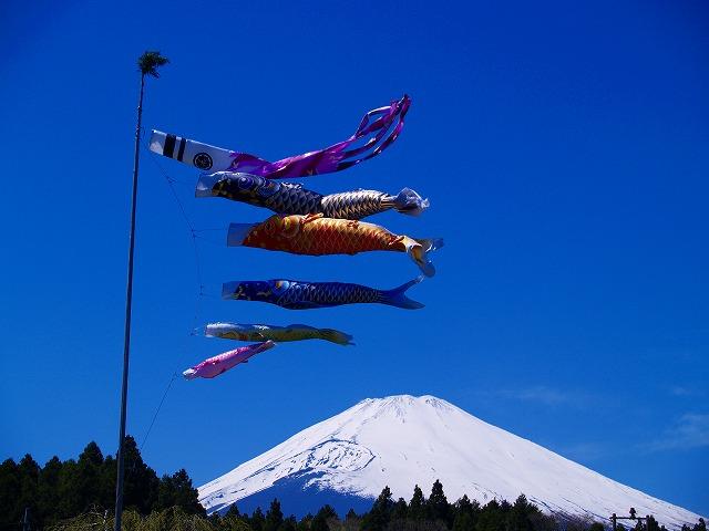 富士と鯉のぼり