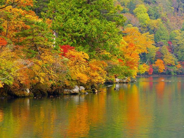 湯の湖彩々