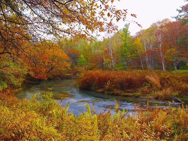 湯川の流れ