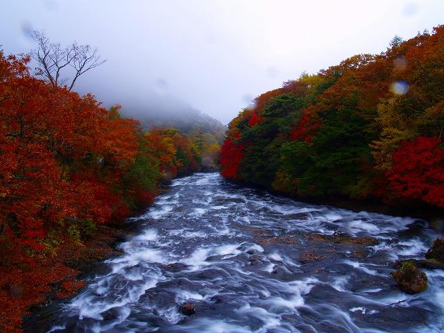 雨の竜頭の滝