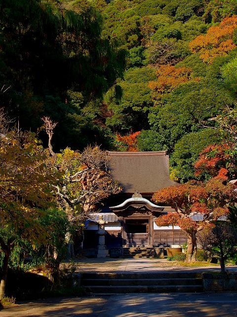 秋の円覚寺舎利殿