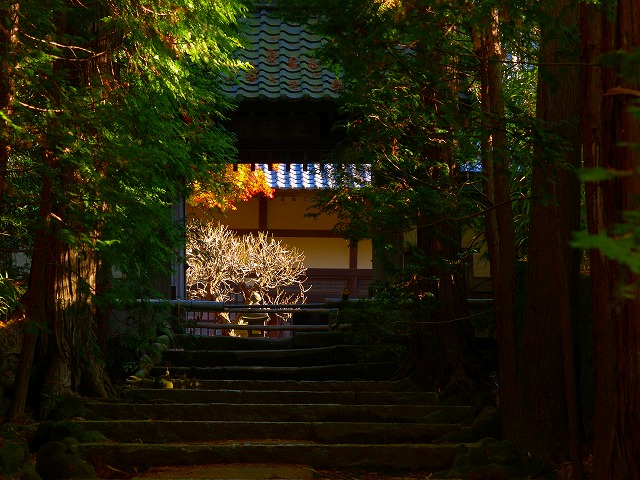 秋の建長寺内の院