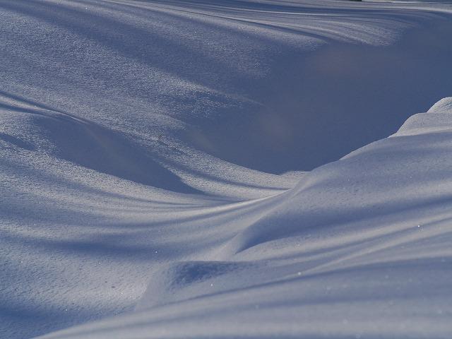 駒出池 雪原