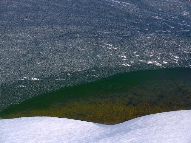 駒出池 湖水