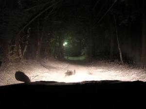 4月16日の雪道