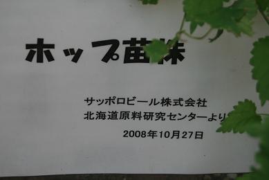 7373.jpg