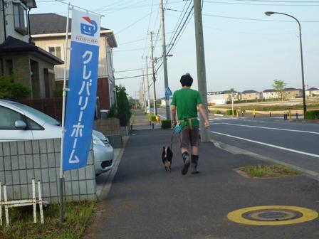 お散歩(6/3)1