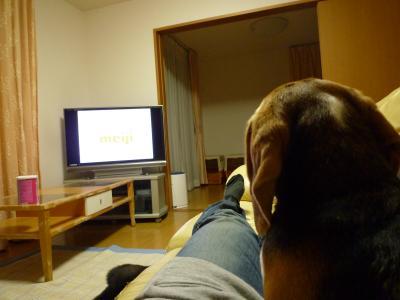 win TV見る
