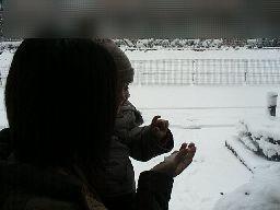 ほら、これが雪だよ