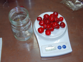 cherry_w03.jpg