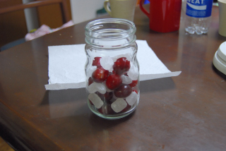 cherry_w04.jpg