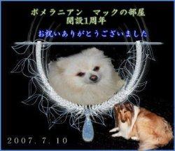 mac09.jpg