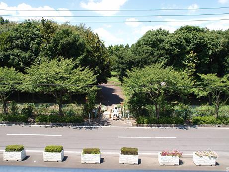 004 三郷公園