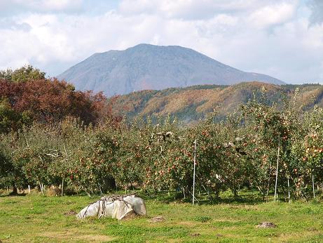 189 山風景