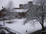 雪 2006.2.24
