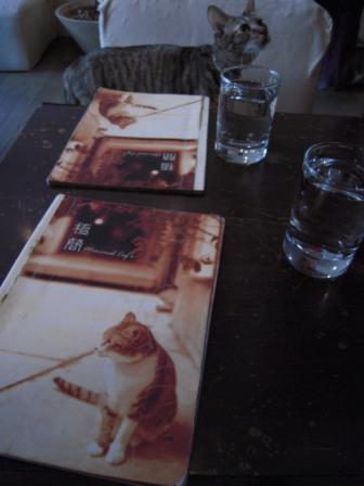 ネコ カフェ 6