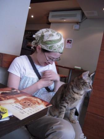 ネコ カフェ 10