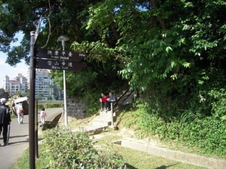 碧湖公園37