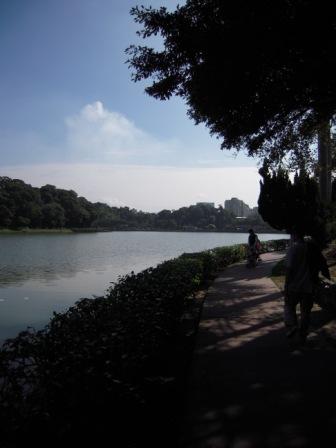 碧湖公園53