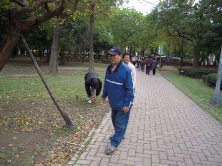 台北花卉展11
