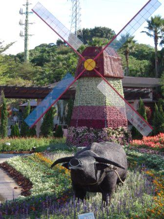 台北花卉展 (自来水博物館編)26