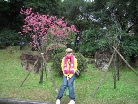 桜が咲いた4