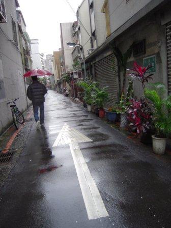 春節━猫カフェ11