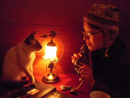 春節━猫カフェ39