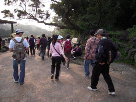 2010 陽明山花季6
