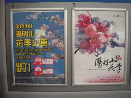 2010 陽明山花季3