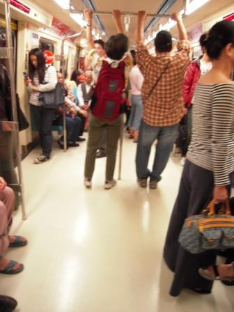 2010 陽明山花季1