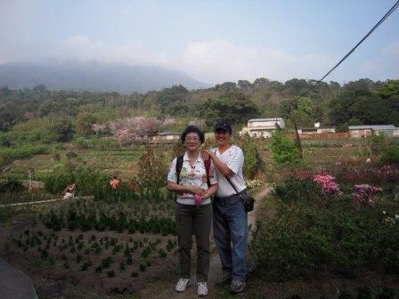 2010 陽明山花季24