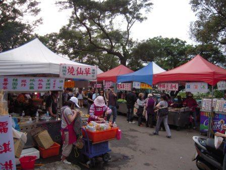 2010 陽明山花季54