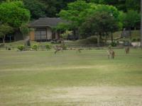 2009GW宮島20